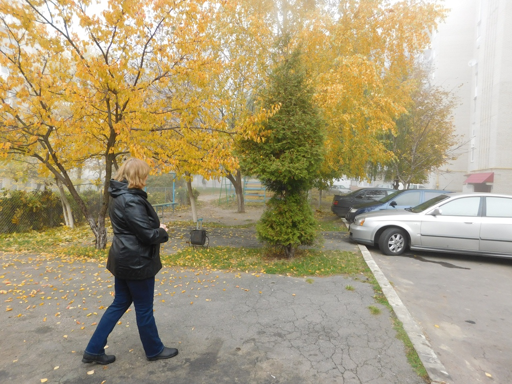 У ОСББ «Новосел-Луцьк» живуть, як одна велика сім'я
