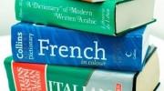 Луцьк: благодійні курси іноземної мови